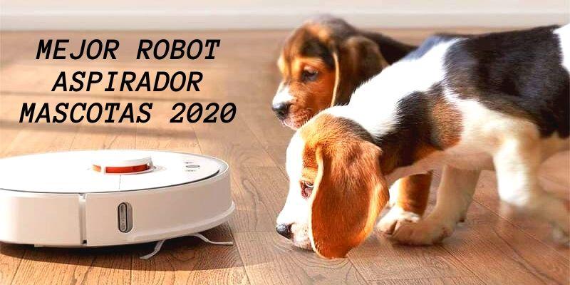 robot mascotas 2020